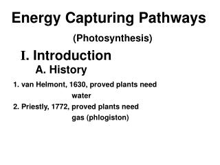 Energy Capturing Pathways (Photosynthesis)