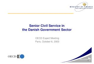 Senior Civil Service in  the Danish Government Sector
