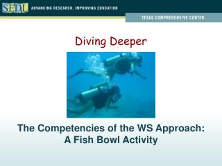 The Competencies of the WS Approach:  A Fish Bowl Activity