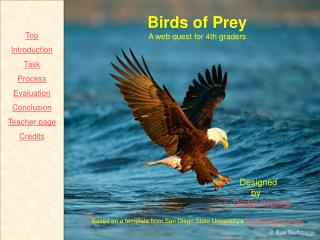 Birds of Prey A web quest for 4th graders                                                   Designed