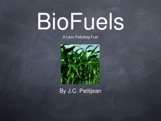 BioFuels A Less Polluting Fuel
