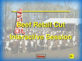 Beef Retail Cut Interactive Session
