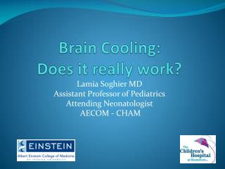 Brain Cooling:  Does it really work