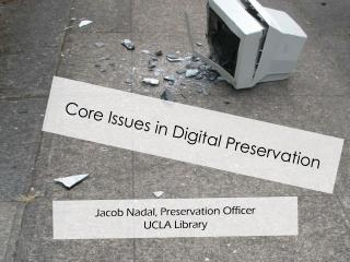 Core Issues in Digital Preservation