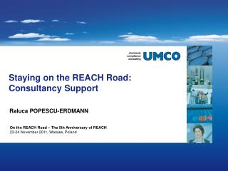 Staying on the REACH Road:  Consultancy Support