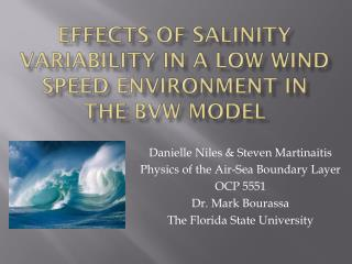 Effects of Salinity Variability in a low wind speed Environment in the BVW Model