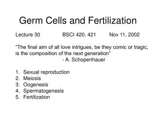 Germ Cells and Fertilization