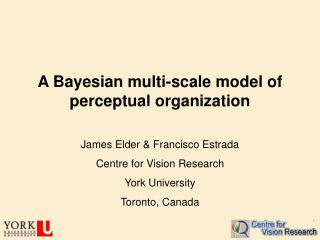 A Bayesian multi-scale model of perceptual organization