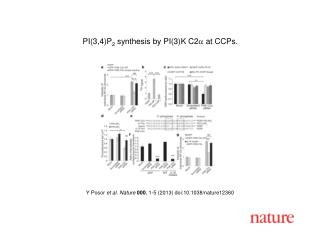 Y Posor et al.  Nature  000 ,  1 - 5  (2013) doi:10.1038/nature 12360