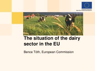 The situation of the dairy sector in the EU