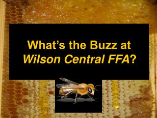 What's the Buzz at Wilson Central FFA ?