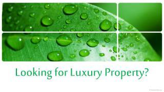 Luxury Property For Sale? Check 70 PALM AV Miami Beach Flori