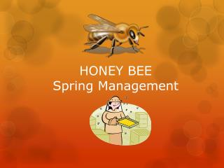 HONEY BEE Spring Management