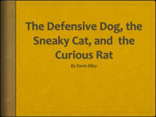 The Defensive Dog, the Sneaky Cat, and  the Curious Rat
