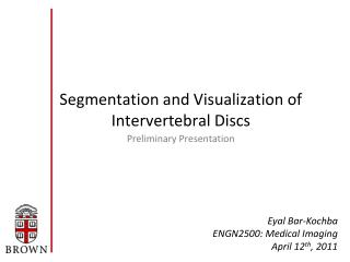 Segmentation and Visualization of Intervertebral Discs
