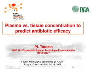 Plasma vs. tissue concentration to predict antibiotic efficacy