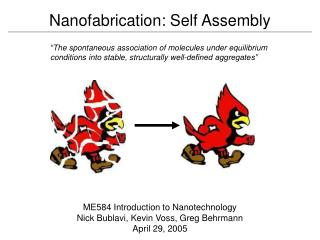Nanofabrication: Self Assembly