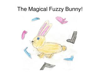 The Magical Fuzzy Bunny!