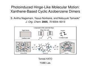 Photoinduced Hinge-Like Molecular Motion: Xanthene-Based Cyclic Azobenzene Dimers