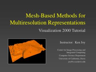Mesh-Based Methods for Multiresolution Representations