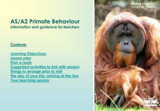 AS/A2 Primate Behaviour Information and guidance for teachers Contents Learning Objectives