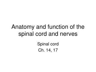Anatomy and function of the spinal cord and nerves