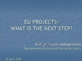 EU P ROJECTS :  W HAT IS THE NEXT STEP ?