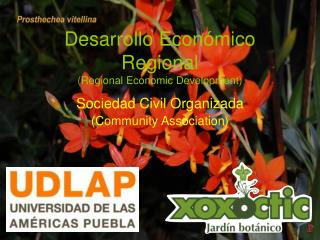 Desarrollo Económico Regional (Regional Economic Development)