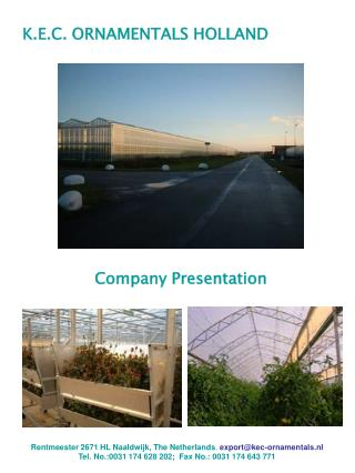 K.E.C. ORNAMENTALS HOLLAND