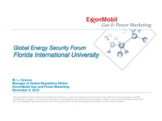 Global Energy Security Forum Florida International University