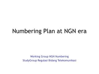 Numbering Plan at NGN era