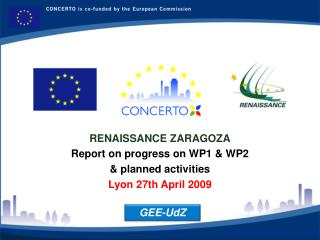 RENAISSANCE ZARAGOZA Report on progress on WP1 & WP2  &  planned activities Lyon 27th April 2009