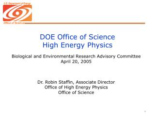 DOE Office of Science High Energy Physics