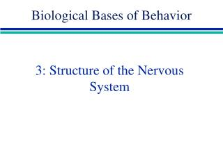 3: Structure of the Nervous System