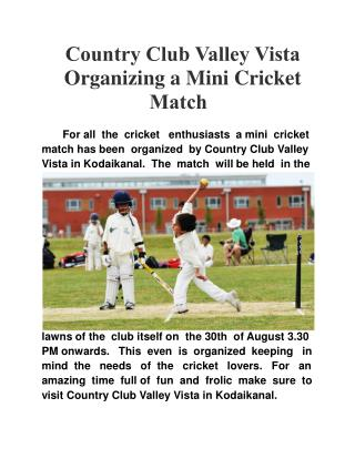 Country Club Valley Vista Organizing a Mini Cricket Match