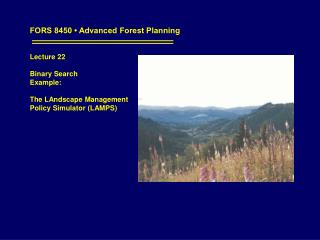 FORS 8450 • Advanced Forest Planning Lecture 22 Binary Search  Example: The LAndscape Management