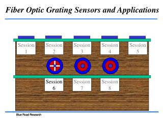 Fiber Optic Grating Sensors and Applications