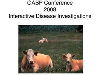 OABP Conference 2008 Interactive Disease Investigations