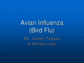Avian Influenza (Bird Flu)