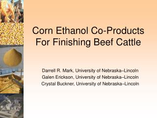 Corn Ethanol Co-Products For Finishing Beef Cattle