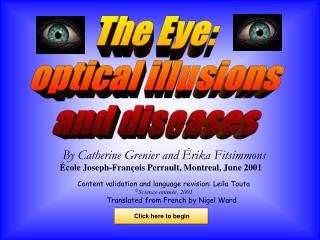 The Eye: optical illusions and diseases