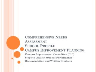 Comprehensive Needs         Assessment School Profile Campus Improvement Planning