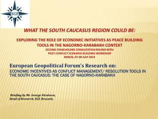 European  Geopolitical Forum's Research on: