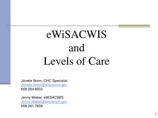 eWiSACWIS and Levels of Care