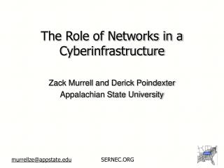 The Role of Networks in a Cyberinfrastructure