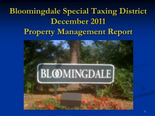 Bloomingdale Special Taxing District December 2011 Property Management Report