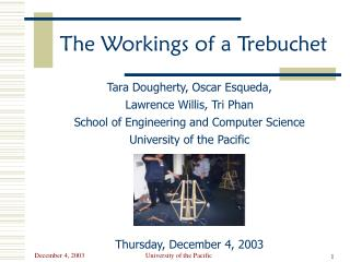 The Workings of a Trebuchet