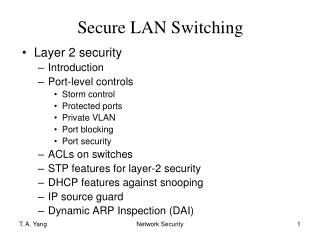 Secure LAN Switching