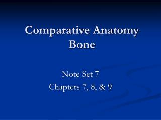 Comparative Anatomy Bone