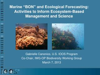 Gabrielle Canonico, U.S. IOOS Program Co-Chair, IWG-OP Biodiversity Working Group March 7, 2013